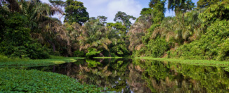 Deadly Amazon River Fire Update: International Expeditions' La Estrella Amazonica