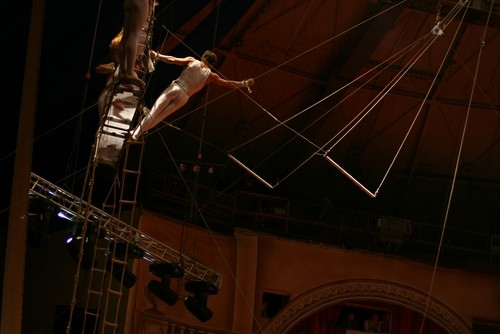 MSC Cruise passengers can expect high-flying acrobatic shows come 2017.